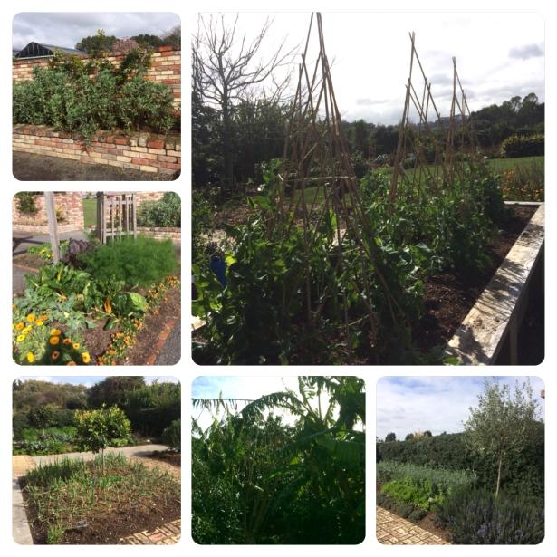 BotanicGarden4